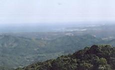 正福寺から的矢湾遠望