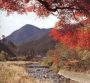 ツヅラト峠遠望