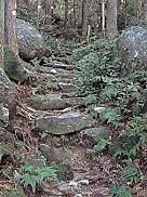 八鬼山熊野古道