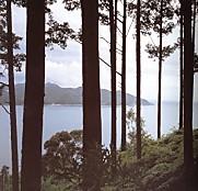 三木峠風景