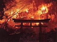 神倉神社火祭り鳥居