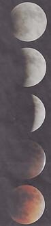 月食1月31日部分皆既