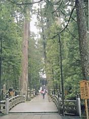 高野山奥の橋