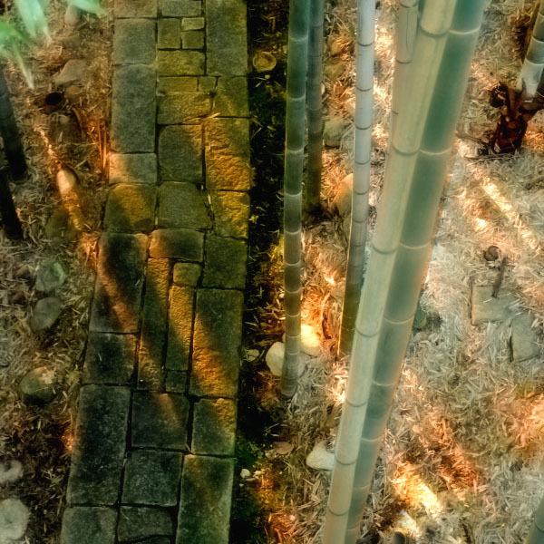 石畳と竹林