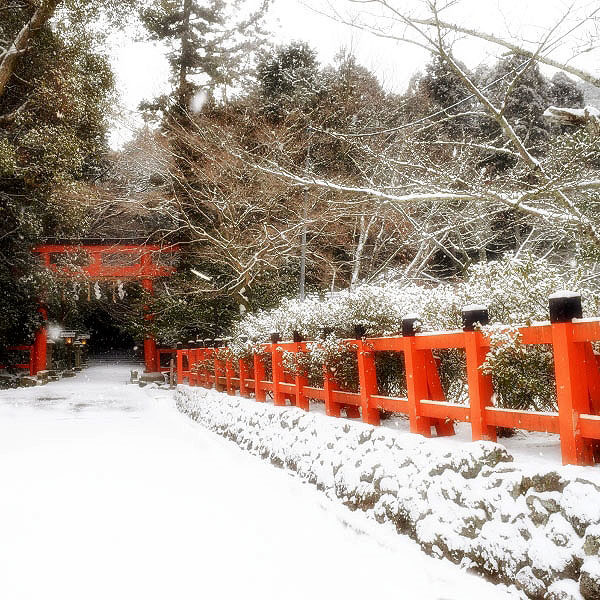 大田神社の雪