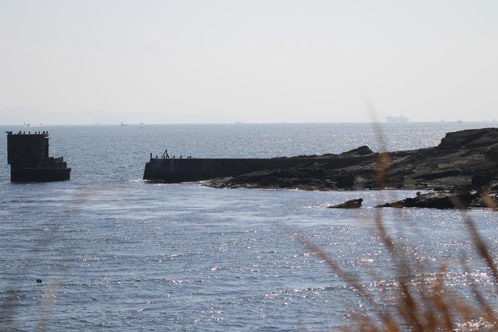 旧海軍施設の残骸と鵜の飛翔シーン_2