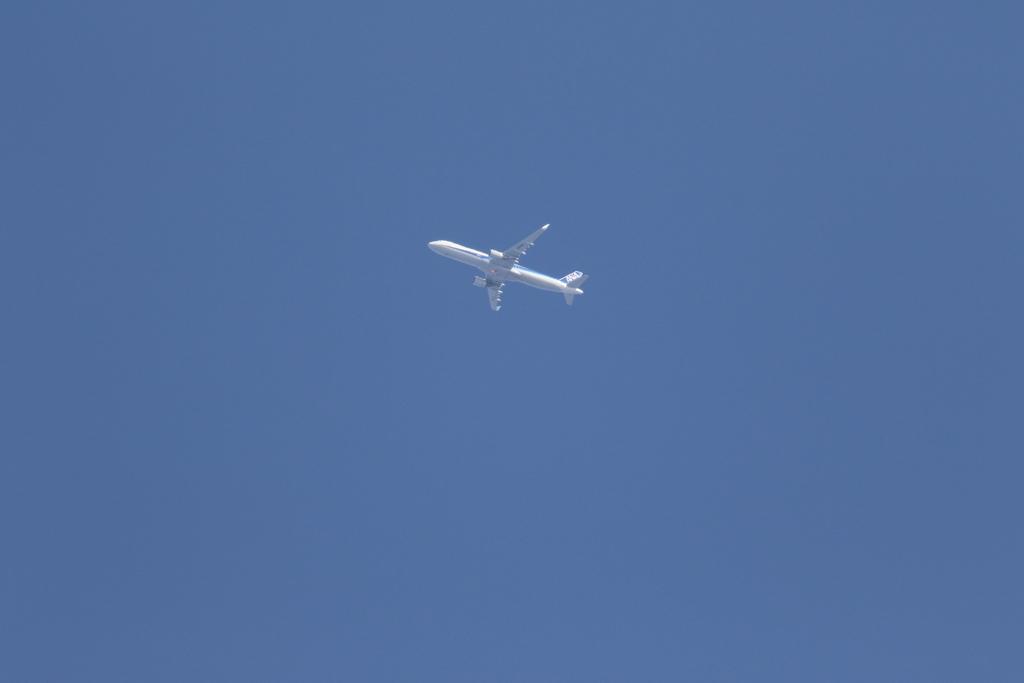 ついでに上空にはANA機が