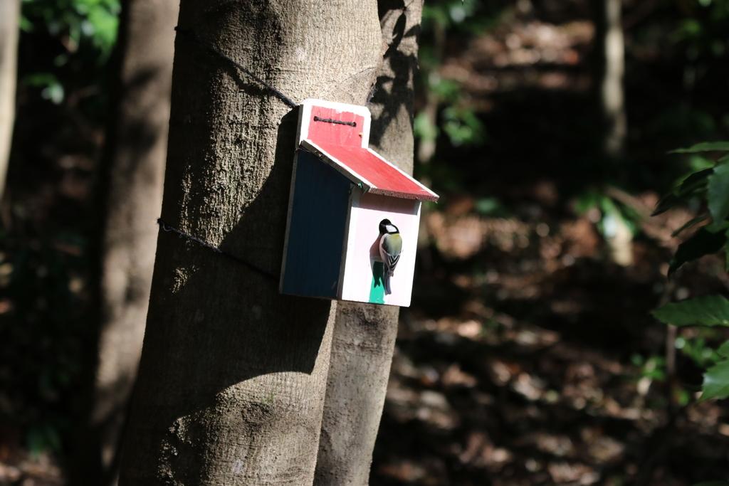 森林公園にて_14