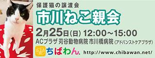 20180114ichikawa_320x120.jpg