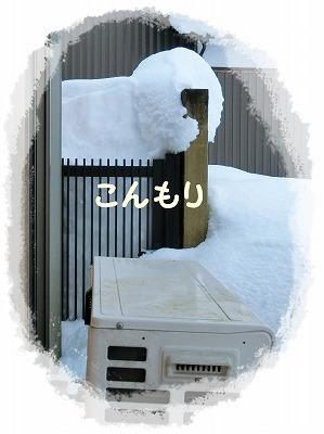 s-2ooyuki180211-CIMG2539
