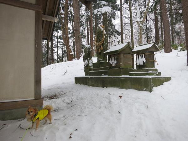 雪の初詣 藤の沢神社 山之神 茶太郎