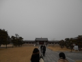 180225薬師寺に着き整理券配布所へ