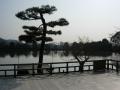180224五大堂前の池
