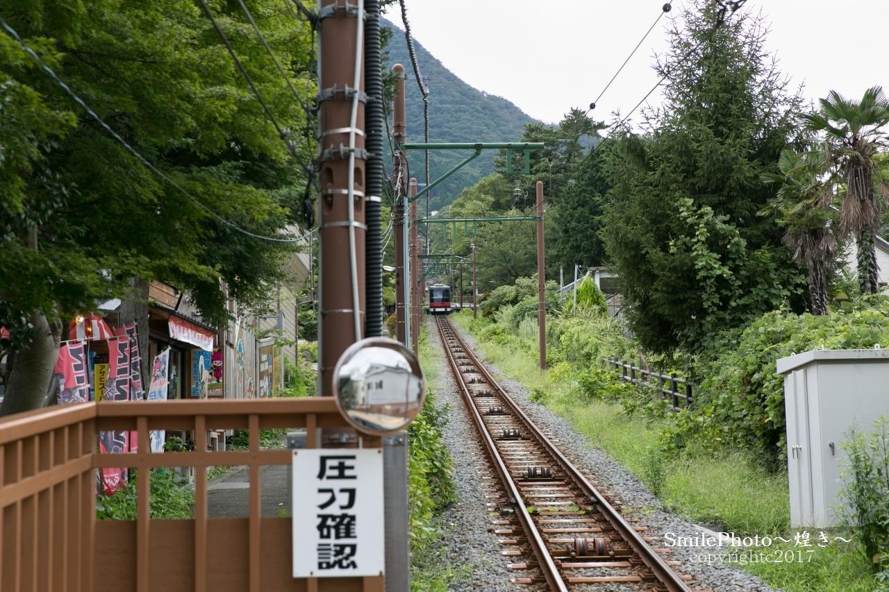 9T4A2002.jpg