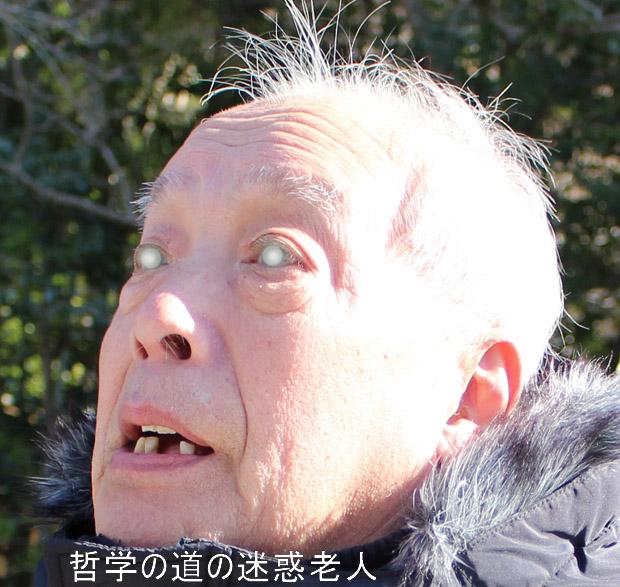 shusei7763.jpg