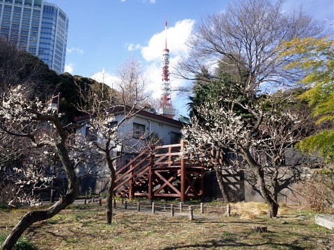 howaitososu02.jpg