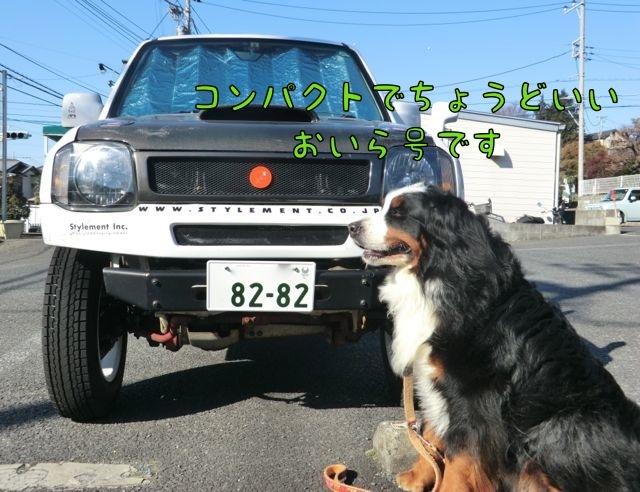 CIMG8116.jpg