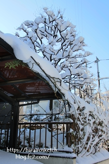 雪201801-11