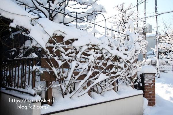 雪201801-22