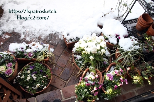 雪201801-27