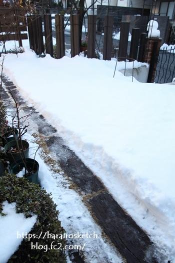 雪201801-45