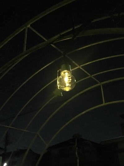 ブログ0217電球型ソーラーライト1