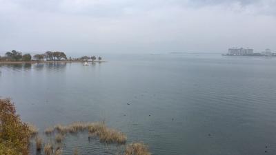 琵琶湖大橋西詰めから眺めた北湖(11月30日13時15分頃)