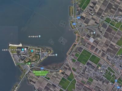 赤野井湾奥
