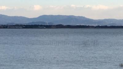 琵琶湖大橋西詰めから眺めた北湖と南湖(2月6日14時20分頃)