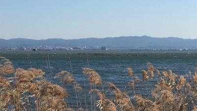 爆風の琵琶湖南湖(YouTubeムービー)