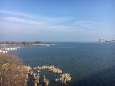 琵琶湖大橋西詰めから眺めた北湖(1月16日12時50分頃)