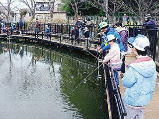 横浜市二ツ池公園の駆除体験と生き物観察会