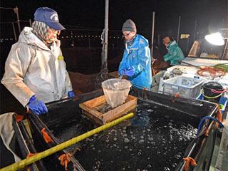 昨年12月のヒウオ漁の様子