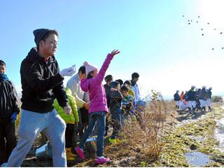 セタシジミを琵琶湖北湖から南湖へ移動