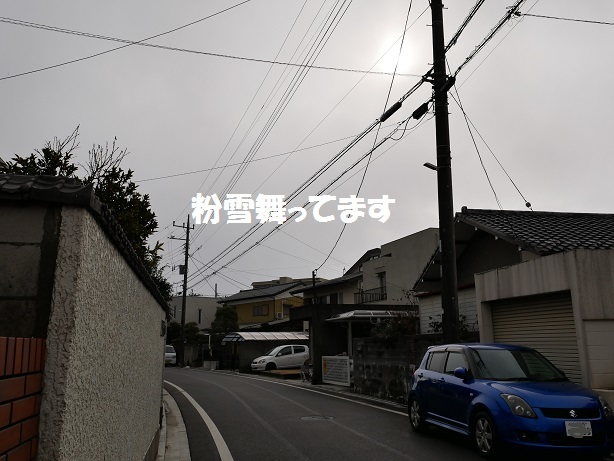 P1580918.jpg
