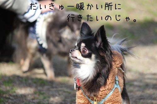 IMG_3480.jpg