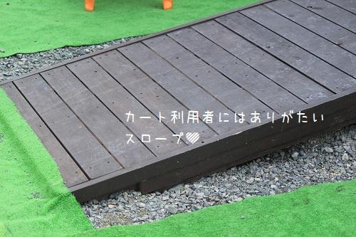 IMG_3916.jpg