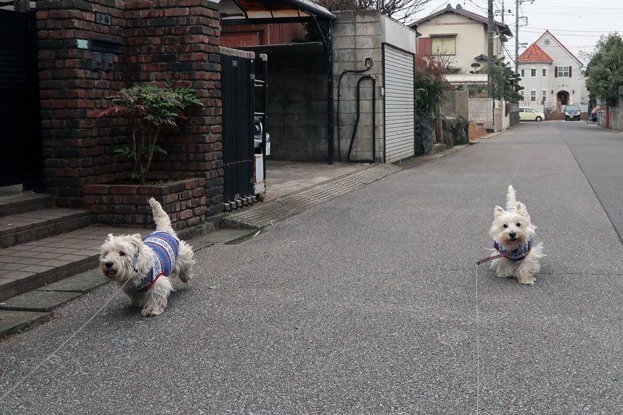 futunoroutinecoursegaohisa1.jpg