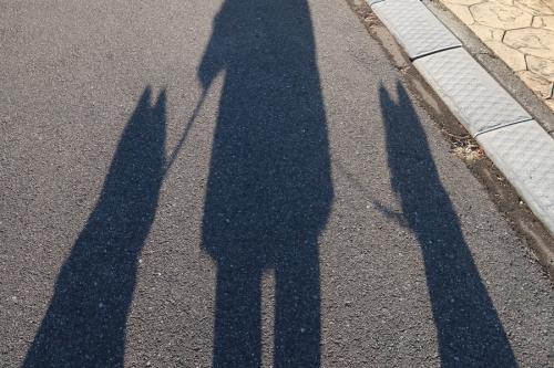 noragakyoryuchihemodottekita3.jpg