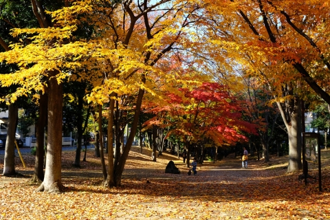 03港北ニュータウン公園