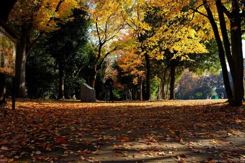 04港北ニュータウン公園
