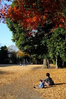 06港北ニュータウン公園