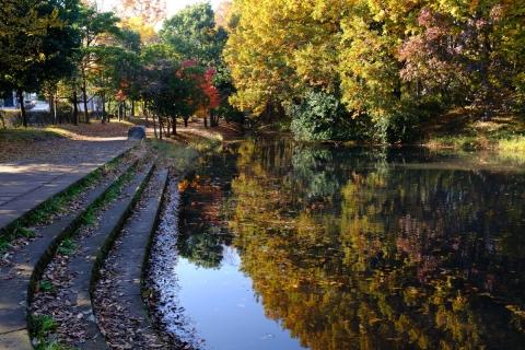 10港北ニュータウン公園