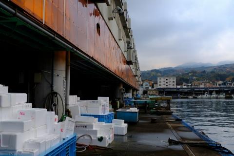 13小田原漁港