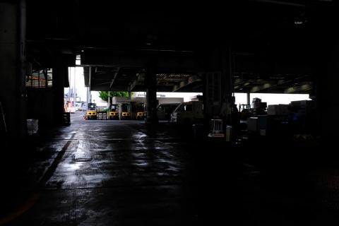 14小田原漁港