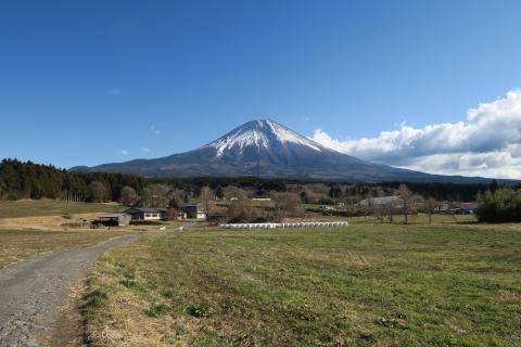14朝霧高原の富士山