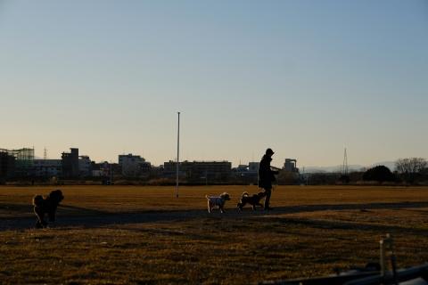 06犬の散歩