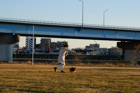 07犬の散歩