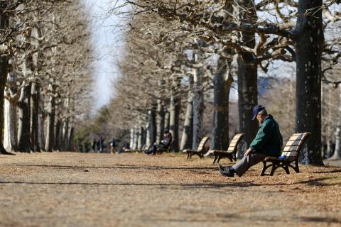07並木のベンチ老人