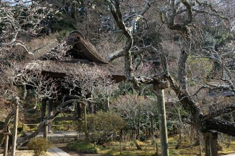 08東慶寺